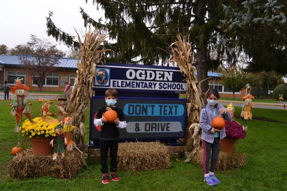Ogden's Pumpkin Patch